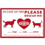 pet rescue cling