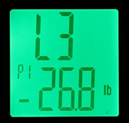 ozeri weight master bmi scale green screen