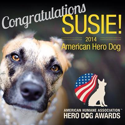 Susie's Hope - susies law dog hero award