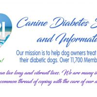 Have a Diabetic Pup?  The Best Support Group You Will Find is the Canine Diabetes Support & Information Group