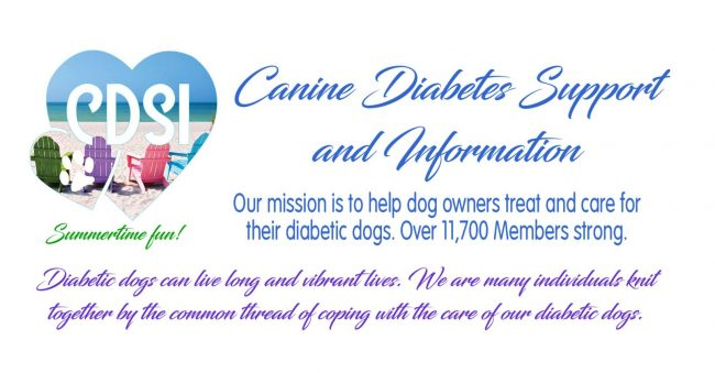 Canine Diabetes Support and Information Facebook Group