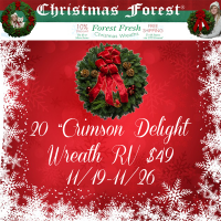 """20"""" Christmas Forest Crimson Delight Wreath Giveaway"""